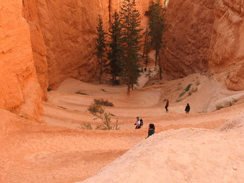 Bryce Canyon Viaggi