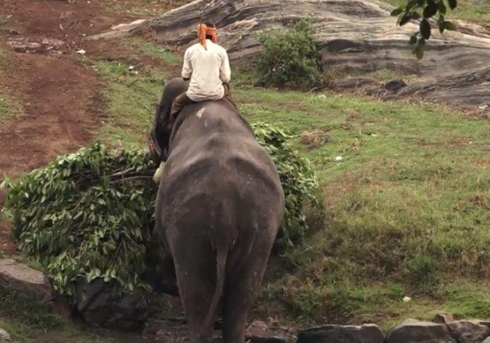 Viaggi In India Quanto Dove Quando
