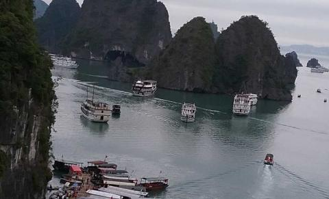 Baia Di Halong Pamm Travel